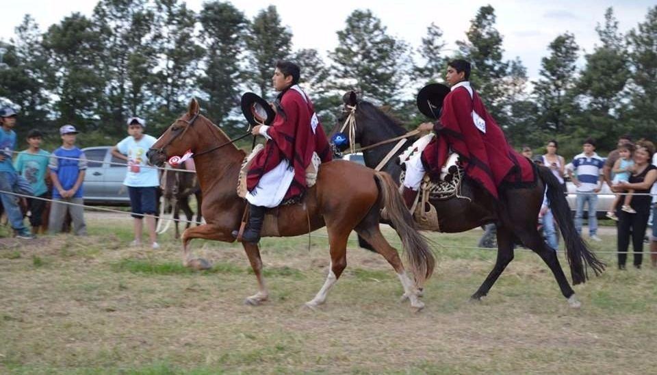 Cuarto concurso de caballos peruanos